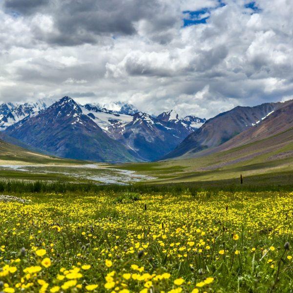 Chitral Tours - Rozefs Tourism